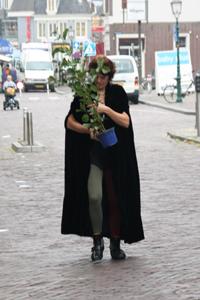 Marlies-boom-kerkstraat-hoorn